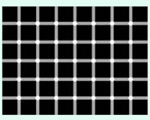 ilusiones opticas: cuántos puntos negros ves?