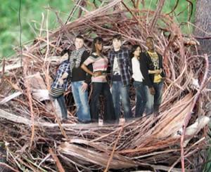 sindrome del nido vacio